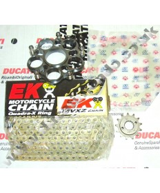 Ducati Hypermotard & Hyperstrada 821 inc SP Chain & Sprocket kit & extra heavy duty gold EK MVXZ chain 13-14